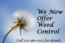 weed service